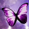 3002_1524877547_avatar