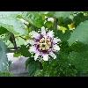 3002_1527795480_avatar