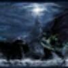 3002_1106228919_avatar