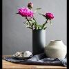 3002_1538199368_avatar