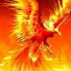 3002_1534858171_avatar