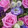 3002_1524827529_avatar