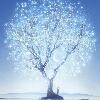 3002_1523952306_avatar