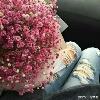 3002_1511566421_avatar