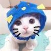 3002_1532940278_avatar
