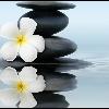 3002_1515922468_avatar