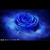 3002_1521769540 large avatar