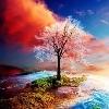 3002_1406157014_avatar