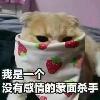 3002_1533905007_avatar