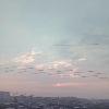 3002_1107455588_avatar