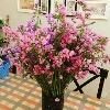 3002_1523905448_avatar