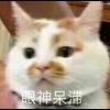 3002_1400048230_avatar