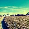 3002_1511135587_avatar
