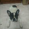 3002_1400927685_avatar