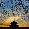 3002_1530338692_avatar