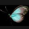 3002_1530911167_avatar