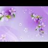3002_1003225487_avatar