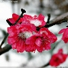 3002_1521610010_avatar