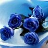3002_1104357326_avatar