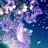 3002_1405350549_avatar
