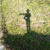 3002_1509853681_avatar