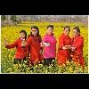 3002_1524469532_avatar