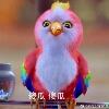 3002_1400943218_avatar
