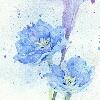 3002_1522514539_avatar