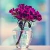 3002_1526090481_avatar