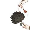 3002_1522631644_avatar