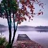 3002_1003535593_avatar