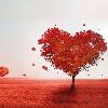 3002_1521516554_avatar
