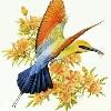 3002_1523791858_avatar