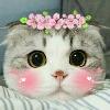 3002_1521590150_avatar