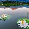 3002_1534959566_avatar