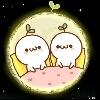 3002_1524689751_avatar