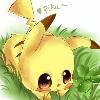 3002_1529228000_avatar