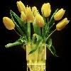 3002_1404937303_avatar