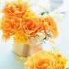 3002_1405694513_avatar