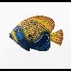 3002_1404514103 large avatar