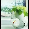 3002_1515609660_avatar