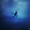 3002_1527184108_avatar