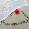 3002_1521942355_avatar