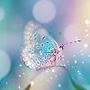 3002_1100250727_avatar