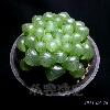 3002_1523755069_avatar